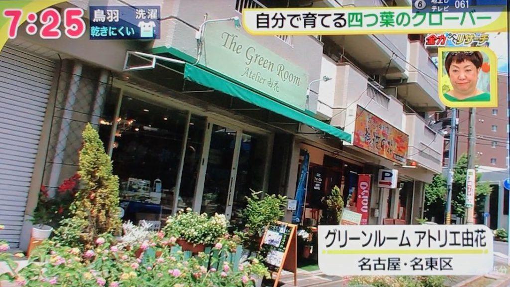 グリーンルームドデスカ-1024x576.jpg