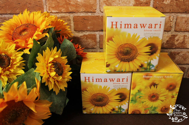 himawari1.png